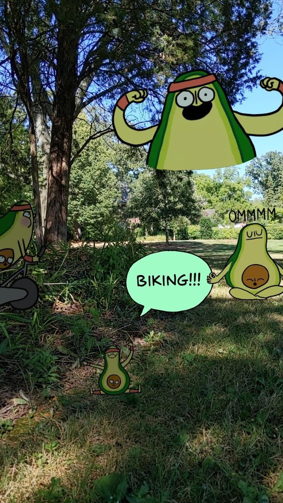 Having Fun on the Bike Trail