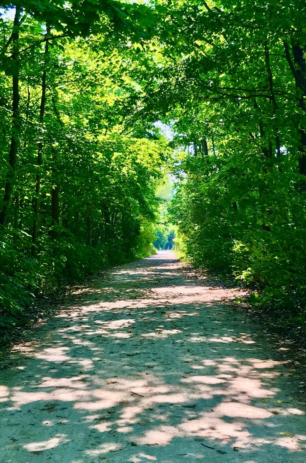 My Green Heaven