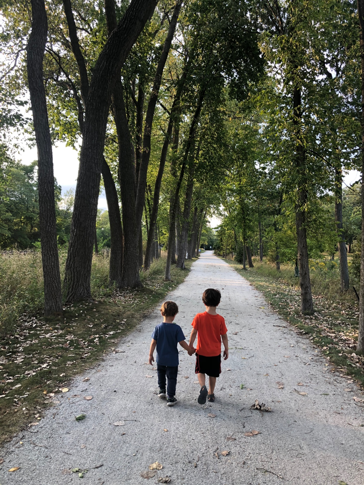 Green Bay Trail and Life explorers…
