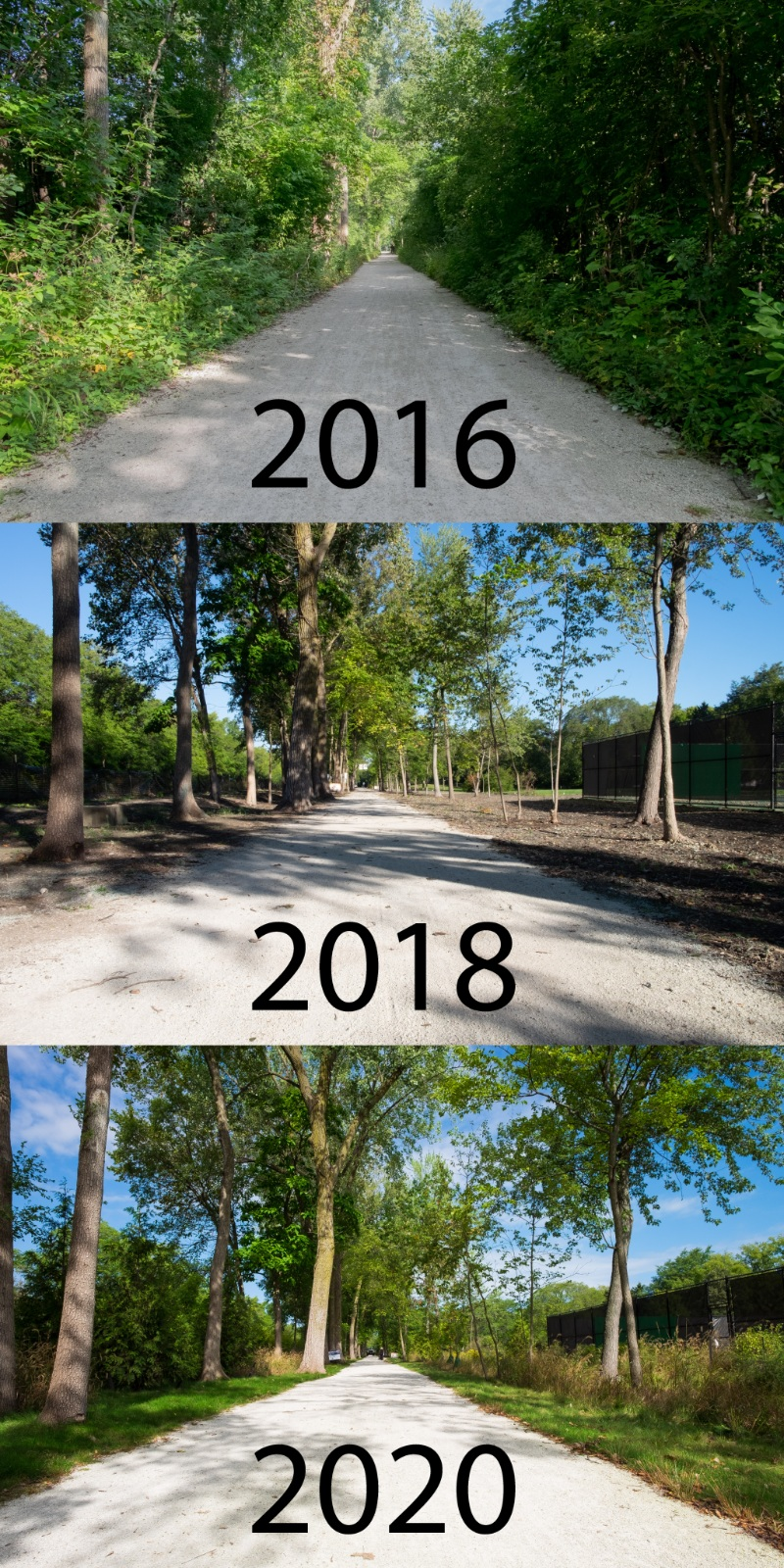 Four Years on the Green Bay Trail