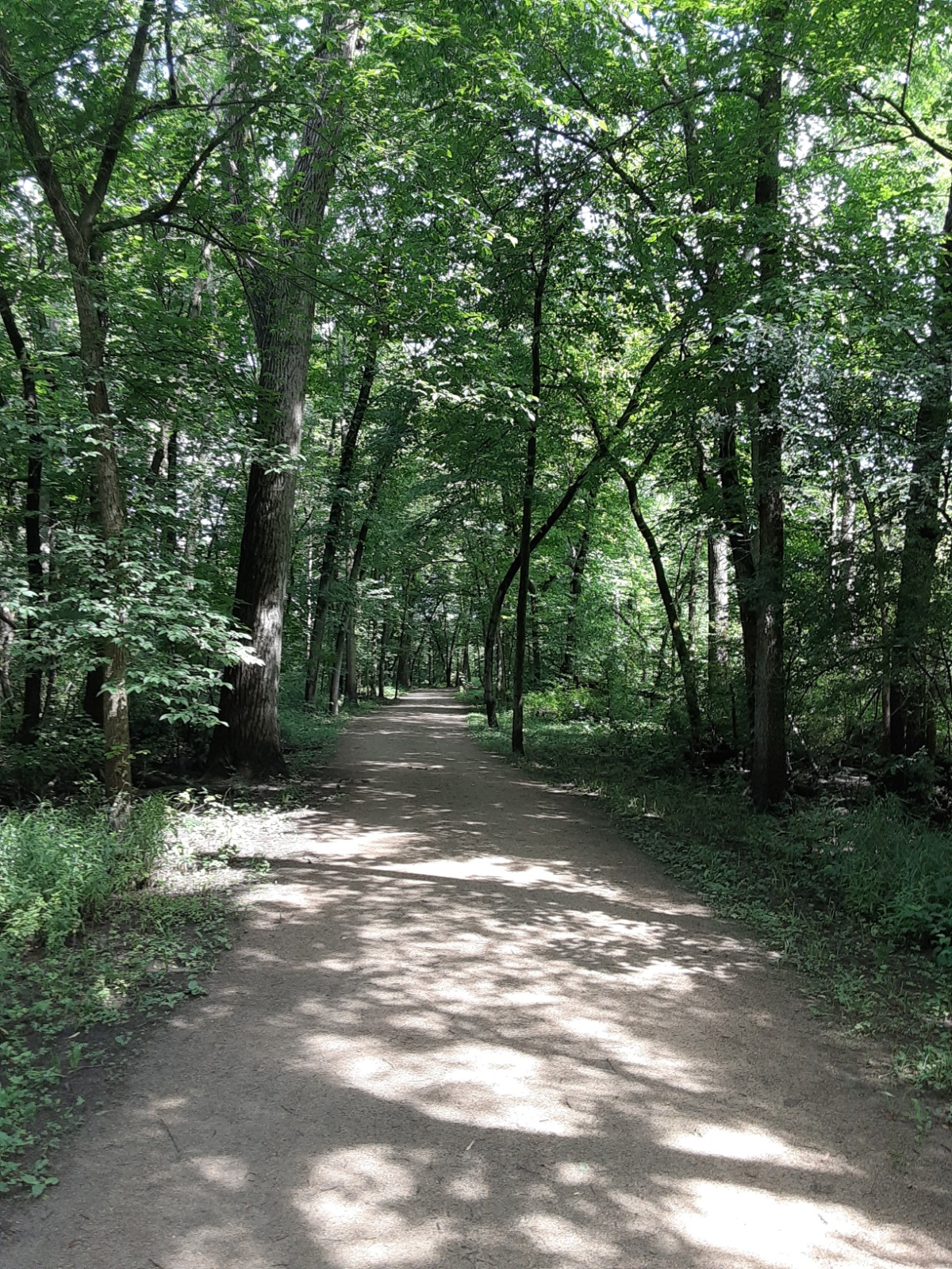 Peaceful Ravinia Stroll
